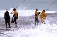 Rock Fishing Report 2015 Released
