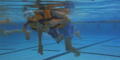 Survival Dog paddle wearing a lifejacket